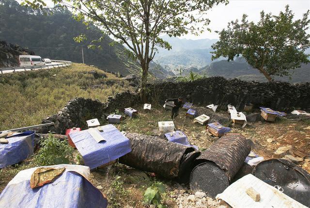 Các đàn ong bạc hà được nuôi ven đường Đồng Văn - Mèo Vạc