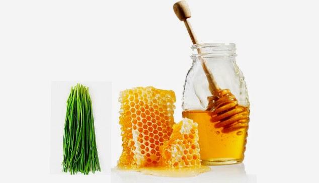 Sử dụng mật ong bạc hà cho trẻ nhỏ