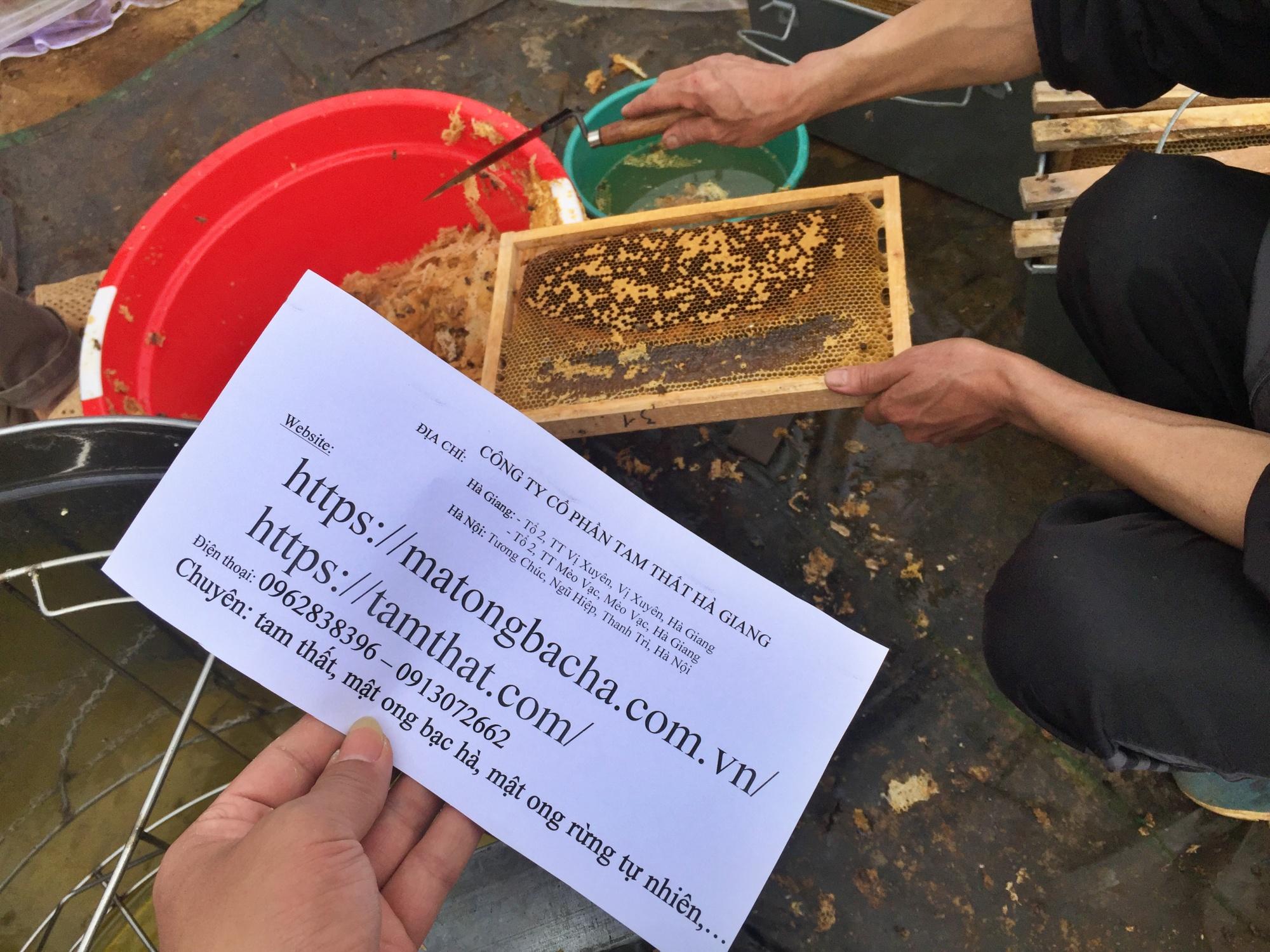 Thời tiết mưa thuận gió hòa, hứa hẹn một mùa khai thác mật ong bạc hà thành công.